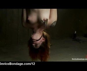 Strapped and suspended babe toyed