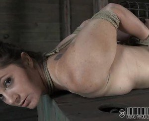 Babes sweet nipples receives painful torturing