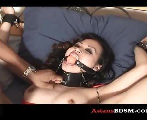 Asian horn dog bounded with pussy licking