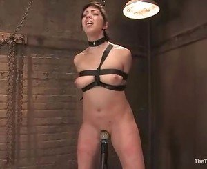 Aiden Starr whips slave Satine Phoenix hard to please the mas...