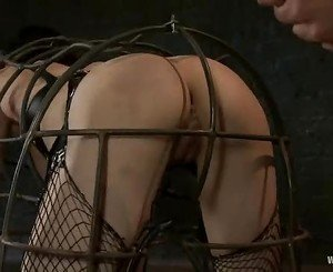 Asphyxia made to get inside a wired cage
